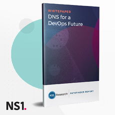 OG-WP-DNS-for-future