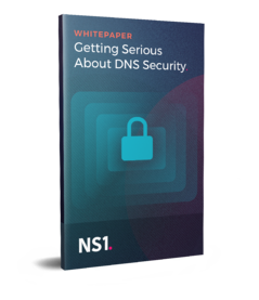dns-security-wp-mockup__1_